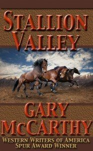 Stallion Valley By Gary McCarthy