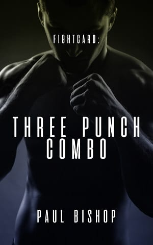 Three Punch Combo by Paul Bishop